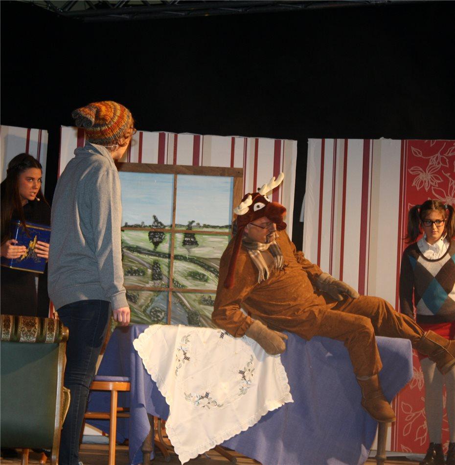 Ein Elch mit Wadenwickel und Weihnachtsbotschaft