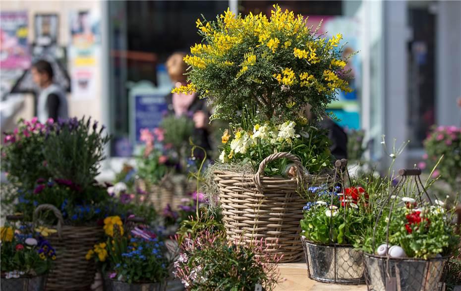 Gartenmarkt Lockt Mit Natur Pur