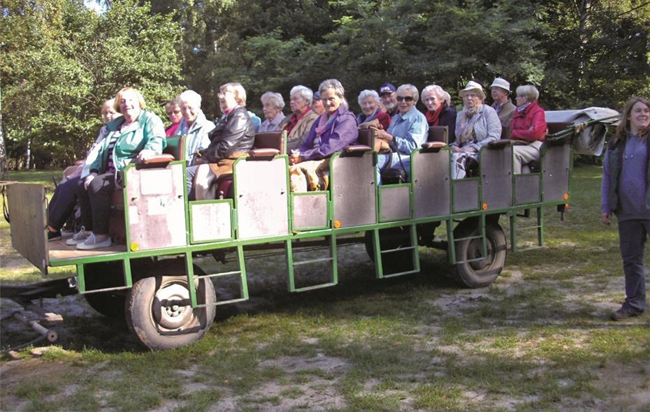 Seniorenfahrt Führte In Die Lüneburger Heide