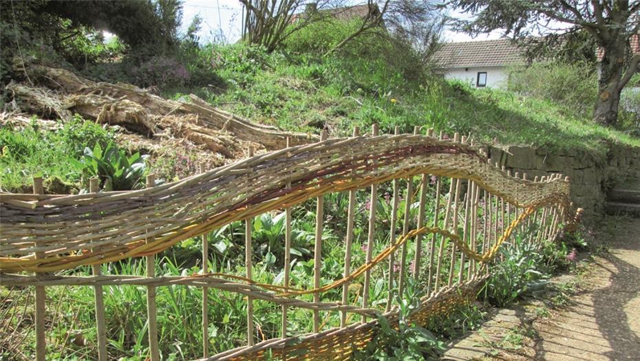 Schwungvoller Zaun Aus Weidenruten