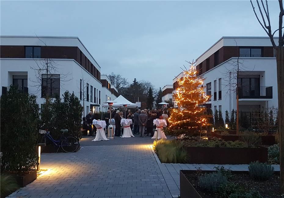 Beleuchteter Weihnachtsbaum aufgestellt