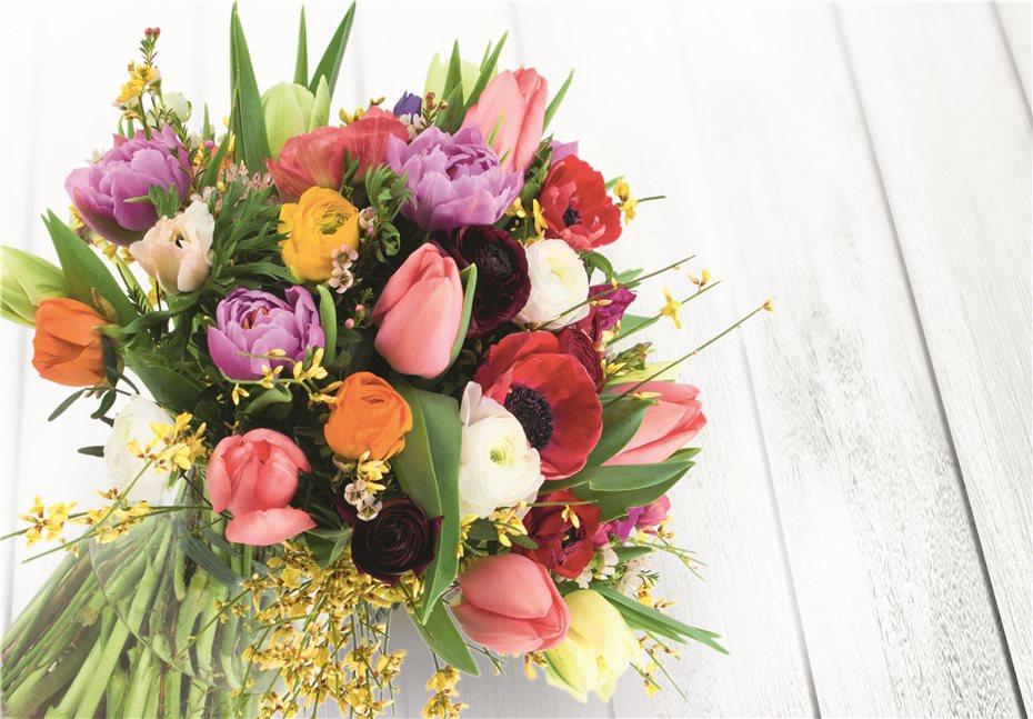 Fünf Jahrzehnte Freude An Blumen Und Pflanzen